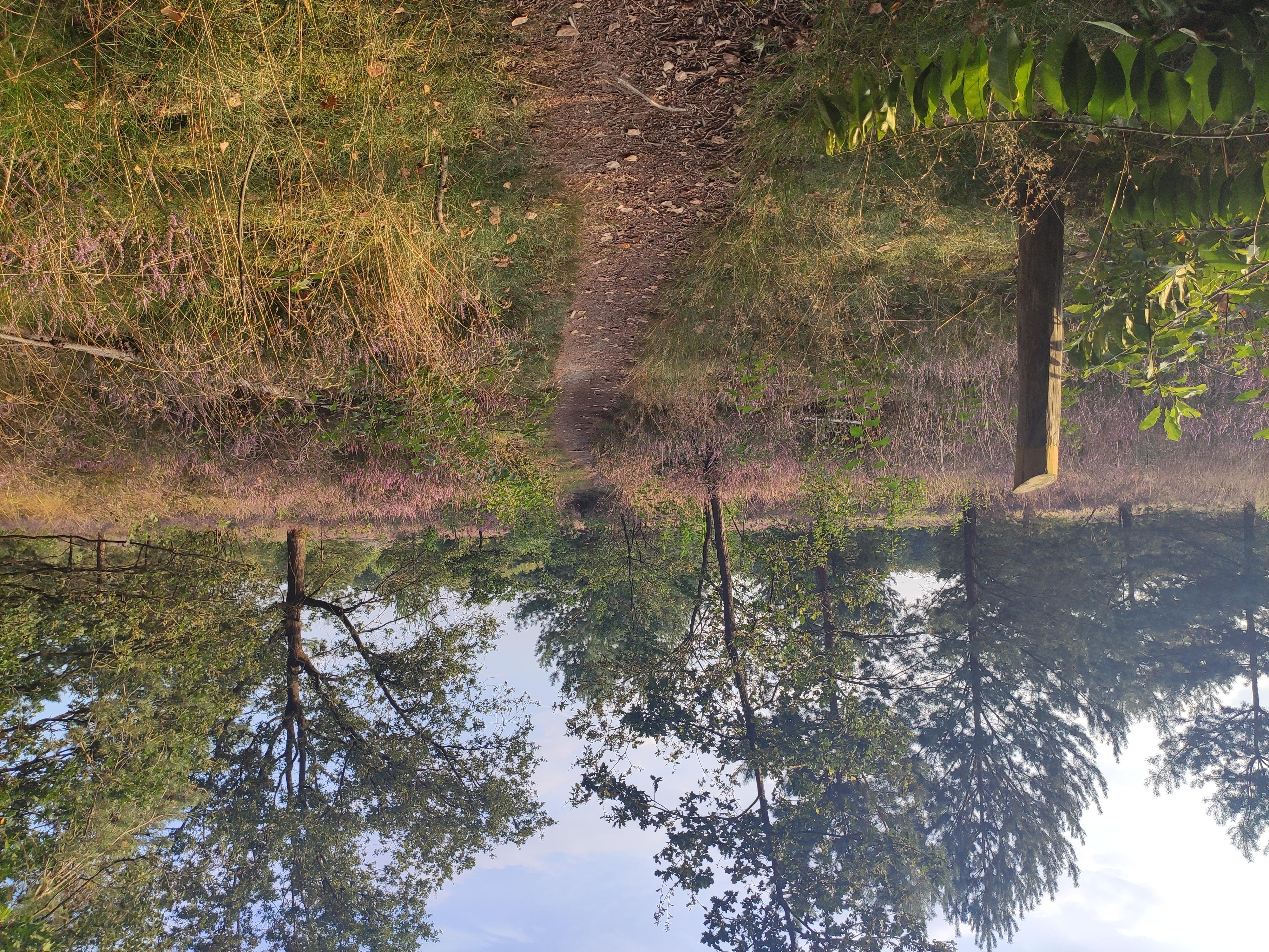 Reisverhaal op Reisreport: Verscholen in het glooiende landschap